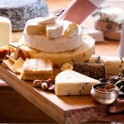 Cheese-SRWW21