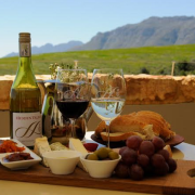 Stellenbosch Wine Tasting